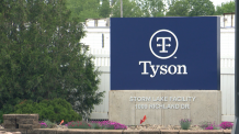 Tyson Foods release results from COVID-19 testing at Storm Lake plant – Siouxland News