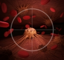 KSQ Boosts PARP Inhibition In Models Of Cancer With USP1 Inhibitor