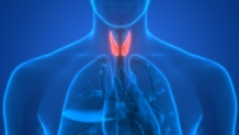 Non-Invasive Method For Measuring Thyroid Hormone Action In Tissue