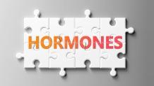 How Hormones Interact with Receptor Sites