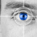 Possible Reversal Of Retinopathy   Worldhealth.net Anti-Aging News