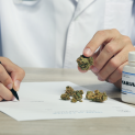 What are the Pros and Cons of Broad-Spectrum CBD?