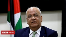 Covid-19: Top Palestinian official Saeb Erekat in 'serious' condition – BBC News