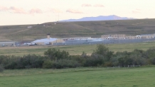 Montana State Prison sees surge in COVID-19 cases – NBC Montana