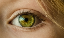Biotech To Test Drug That Replenishes Lost Eye Cells