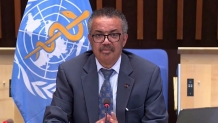 World Health Organization praises New Zealand's response to Covid-19 again | 1 NEWS